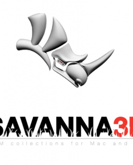 Rhino-savanna